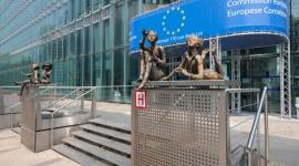 Zielony Ład zagrożony? KE daje tylko 3 proc. potrzebnych funduszy BIZNES, Energetyka - W propozycji budżetu UE na lata 2021-2027 na cele związane ze zmniejszeniem emisji dwutlenku węgle jest zapisane tylko 80 mld euro. To według ekspertów stanowi jedynie 3 proc. sumy, która pozwoliłaby zrealizować wytyczne Europejskiego Zielonego Ładu.